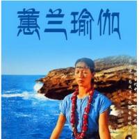 蕙兰瑜伽视频教程初级入门01-40集全集 减肥瑜伽视频