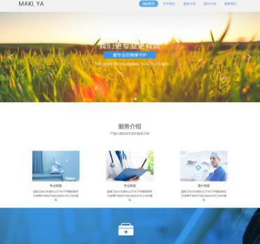 HTML5响应式医疗机构诊所类网站源码 织梦模板