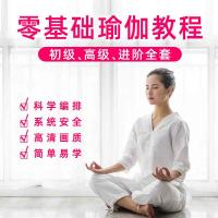 瑜伽培训视频教程 瑜伽初级入门教学视频全套