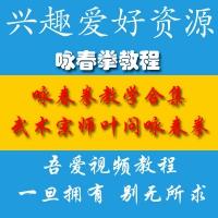 咏春拳教学课程 咏春拳自学全套培训视频