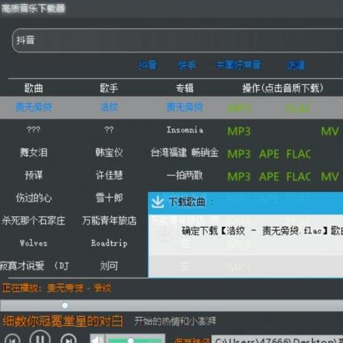 高品质无损音乐mv免费下载器易语言源码+模块