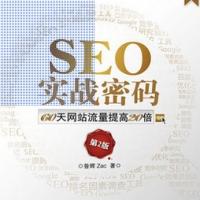 SEO内容优化系列实战 百度SEO视频教程/SEO视频教程/王通seo视频教程