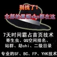 新黑帽SEO技术培训 黑帽SEO优化技术教程视频+工具