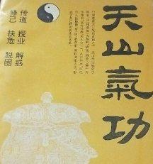 天山气功系列PDF电子书籍下载 带功能训练