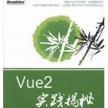 Vue2实践揭密PDF电子书 百度网盘下载