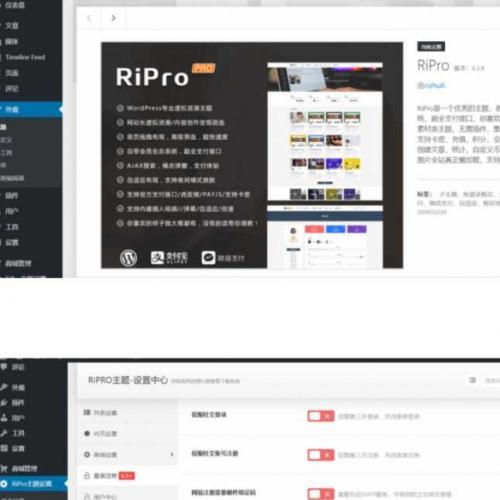 RiPro wordpress资源下载类日主题模板破解v6.3.8