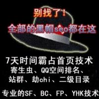 黑帽seo基础技术培训 快速排名教程网资源