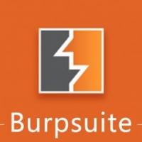 Burpsuite网络抓包工具软件 详细使用教程视频下载