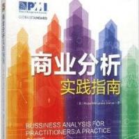 商业分析实践指南PDF电子书下载 中文版