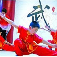 适合幼儿童练的带动作幼儿古诗武术节目视频 幼儿武术操基本功培训班